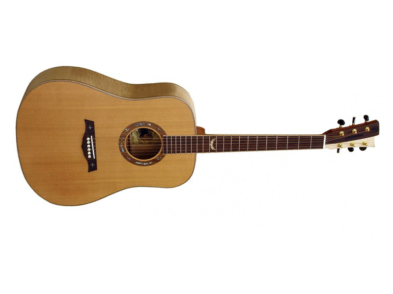 GILMOUR Robust-B | Dreadnought - 1